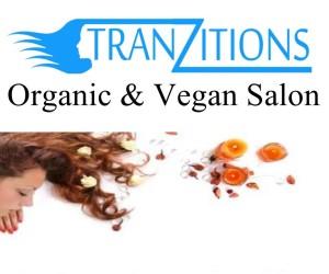 tranzitions logo